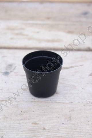 Orchideeën potten zwart 5,5 cm