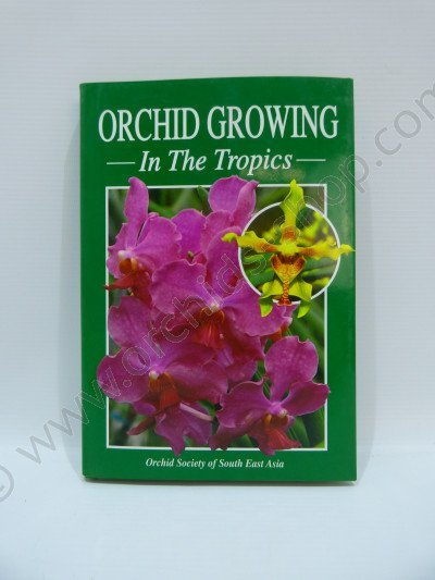 Orchid growing in the tropics