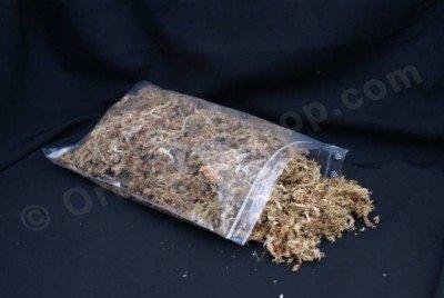 Sphagnum (Mos) gekweekt in Chili 3,5L