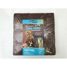 Orchideeën Boomvaren Blokken / Tree Fern boards (30,5 x 30,5 x 2,5 cm)